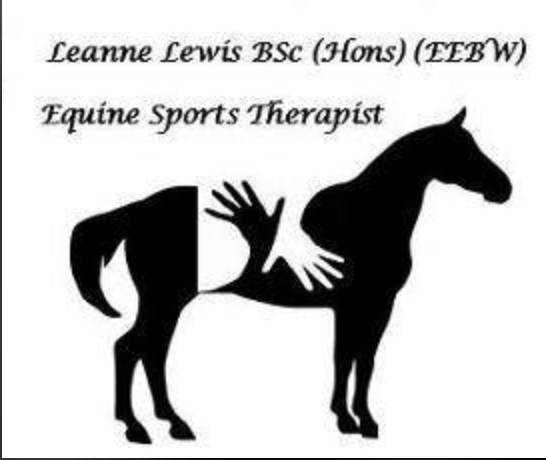 Equine Sports Therapist - Leanne Lewis